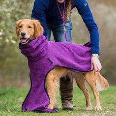 Ein Hundebademantel ist das A und O im Leben des glücklichen, trockenen Hundes. Erfahre hier alles über das wie, was und warum des Hundebademantels!