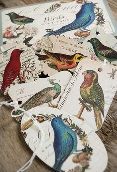 Cavallini Bird Gift Tags