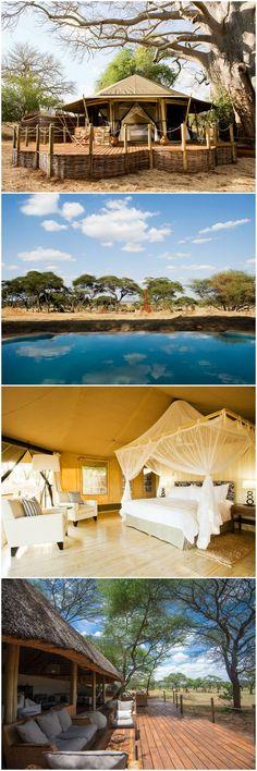 Safari Lodge Africa   Sanctuary Swala   Tanzania   Tarangire National Park