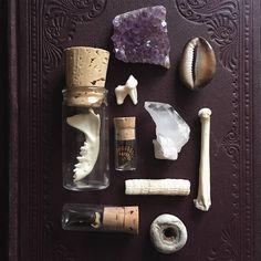 Curiosity Collection