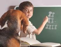 Critical thinking training exercises