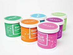 Ice Cream Packaging Design