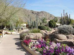 Scottsdale, AZ-Pretty Amazing!