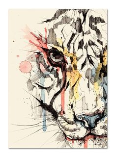 Ink drawing with a kiss of watercolor for added interest. Art And Illustration, Geometric Lion, Tiger Art, Cat Art, Watercolor Paintings, Watercolour, Watercolor Tiger, Watercolor Portraits, Watercolor Landscape