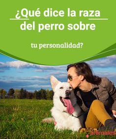 ¿Qué dice la raza del perro sobre tu personalidad?   ¿Las mascotas se parecen a sus dueños?Compartimos distintas investigaciones realizadas para saber qué dice la raza del perro sobre tu personalidad. #raza #perro #personalidad #dueño