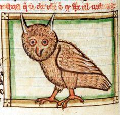 long-eared owlBestiary/Liber de natura bestiarum, England after 1236British Library, Harley 3244, fol. 54v