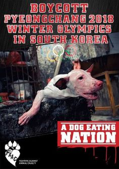 Look at his face as he boils in that pot. Please sign the petition: http://www.change.org/petitions/boycott-pyeongchang-2018-winter-olympics-in-south-korea-a-dog-eating-nation