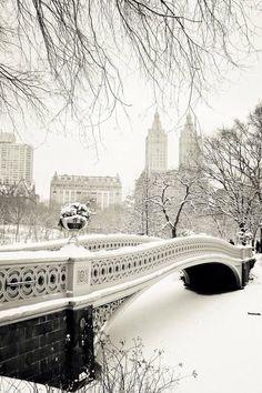 Central Park on a sn