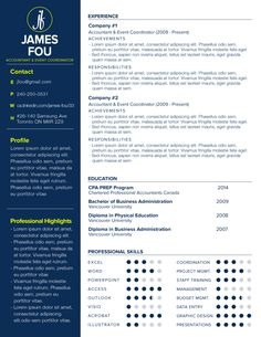 The Standard  Custom Resume Template By Fly Resume  Graphic