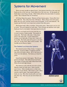Your students will learn all about the systems in their bodies that let them run, jump, play, and even read! #leveledtext #science #bodysystems #reading Reading level: 2.2-7.1