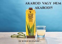 Aloe Veterinary Formula - spray all'aloe per animali - Forever Living Forever Life, Forever Business, Forever Living Products, Aloe Vera Gel, Shampoo, Water Bottle, Skin Care, Drinks, Life Changing