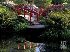 Moon Bridge and Pond in a Japanese Garden, Seattle, Washington; Photo by: Jamie & Judy Wild Love Bridge, Over The Bridge, Ponds Backyard, Backyard Patio, Garden Ponds, Seattle Japanese Garden, Japanese Gardens, Garden Landscaping, Garden Paving