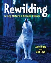 A vibrantly photographed introduction to the rewilding environmental movement shares examples from all over the world where endangered animals have been rehabilitated and returned to their natural habitats, and cities that have dedicated rooftops and disu Keystone Species, Species Extinction, Amur Leopard, Reading Club, Books For Teens, Book Authors, Nonfiction Books, Habitats, Wildlife