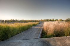 Welland_Canal_Park_Civic_Square-Janet_Rosenberg-Studio-03 « Landscape Architecture Works   Landezine