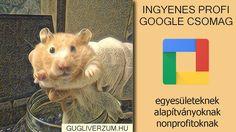 Útmutatók, hasznos tanácsok, tippek-trükkök a Google ingyenes alkalmazásaihoz, szolgáltatásaihoz. Google, Animals, Animales, Animaux, Animal, Animais