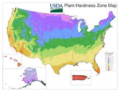 The new USDA plant hardiness zone. Released 2/15/2012!  I'm in 6b.