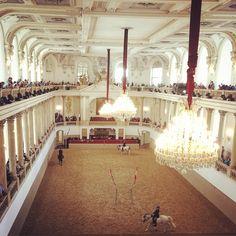 Spanische Hofreitschule in Wien, Wien Spanish Riding School, Space Architecture, Dressage, Vienna, Scale, Ceiling Lights, Design, Horseback Riding, Weighing Scale