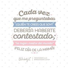 Día de la Madre Mr Wonderful