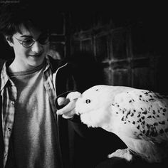 b&w, black and white, and harry potter image