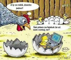 Chick on FB