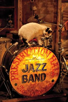 Preservation Hall Jazz Band Gallery