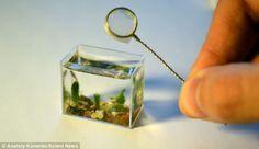 Anatoly Konenko : Fish in your fingers