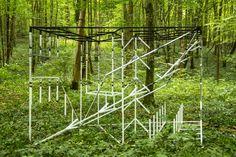 Le Vent des Forêts | artpress