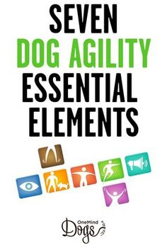 Seven Essential Elements  Do you know how the different elements in your handling affect your dog?  All OneMind Dogs handling techniques include elements of seven key factors to support the dog's movement on an agility course and make it as easy and effective as possible.