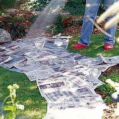 no-dig flower bed - Ive been using newspaper under my mulch for a couple years now, to deter weed growth! Cheap and works!