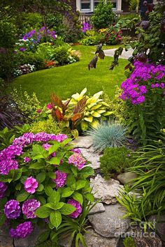 Traditional Landscape/Yard with Endless Summer Hydrangea, Fence, exterior stone floors, Natural rock, Rock landscaping