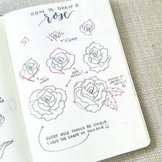 How to draw a rose - bullet journal sketch for floral page