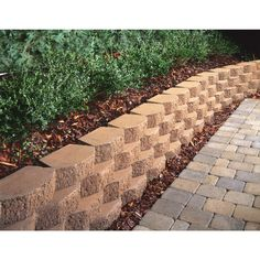 Eyes Concrete Retaining Walls And Planters On Pinterest