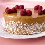 Foodies, Cheesecake, Desserts, Tailgate Desserts, Deserts, Cheesecakes, Postres, Dessert, Cherry Cheesecake Shooters