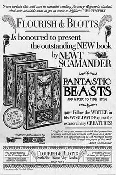 Fantastic Beasts The Crimes Of Grindelwald Flourish and Blotts Poster Fantastic Beasts Poster, Fantastic Beasts And Where, Harry Potter Props, Harry Potter World, Crimes Of Grindelwald, Harry Potter Christmas, Movie Props, Hogwarts, Slytherin