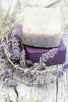 Making your own Homemade lavender soap is not only fun, but a great way to improve your soap making skills. Make 12 Lavender Scented bars in just one hour. Lavender Cottage, Lavender Garden, Lavender Soap, French Lavender, Lavender Blue, Lavender Fields, Lavender Flowers, Lavender Ideas, Soap Labels