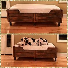 Great dane bed with toddler mattress. Sometimes you need a big bed for a big dog. What a big baby :)
