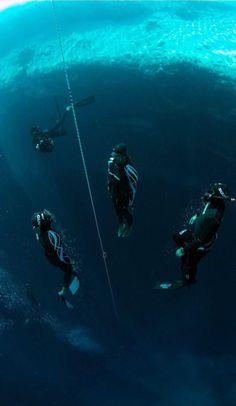 Free divers ascending Dean's Blue Hole, Long Island, Bahamas... wow!!
