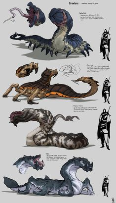 Creatures of the Sands - ArtStation - random creatures, David Sequeira Creature Drawings, Animal Drawings, Cool Drawings, Monster Concept Art, Monster Art, Creature Concept Art, Creature Design, Alien Creatures, Magical Creatures