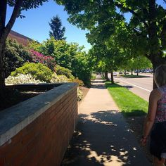 Came out of CH2M Hill Alumni Center at Oregon State today to this!  We have such a beautiful campus. #oregonstate #oregonstateuniversity
