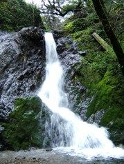 Bohemia Ecological Preserve - take a hike with LandPaths