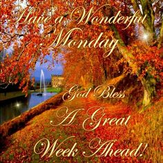 Good Morning Everyone, Happy Monday, I pray that you have a safe and blessed day! Monday Morning Greetings, Good Morning Happy Monday, Happy Sunday Quotes, Monday Quotes, Its Friday Quotes, Good Morning Good Night, Good Morning Quotes, Sunday Morning Wishes, Morning Sayings
