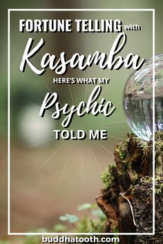 Do you want to know if Kasamba works as a fortune telling and psychic platform? Read about my experience with psychics from Kasamba and whether psychic readings are worth your time and money. Can psychics really be accurate? Find out how I found a trustworth psychic on Kasamba. Psychic Predictions, Psychics, Fortune Telling, Psychic Abilities, Psychic Readings, Tell Me, Platform, Money, This Or That Questions