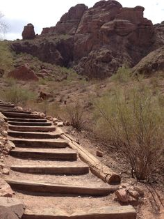 Camelback Mountain. Don't be fooled. It is quite a hike to the top but worth it!