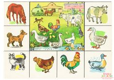 Oral Motor Activities, Pet Day, Farm Animals, Bowser, Childhood Memories, Autism, Worksheets, Teaching, Education