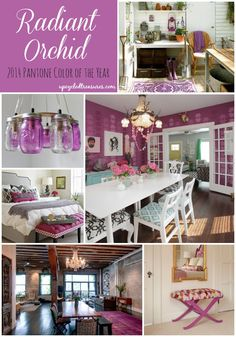 radiant-orchid-the-2014-pantone-color-of-the-year-home-decor-inspiration-via-upcycledtreasures