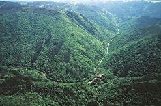 Se trata del bosque atlántico costero más importante que se conserva en Europa, más de 9.000 hectáreas de montes y laderas que acompañan al Eume a su paso por la provincia de La Coruña