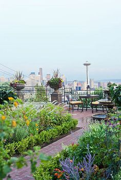 "Seattle's downtown and iconic Space Needle create a dramatic backdrop for the parties on the terrace.    Sources:  Furniture (""Antibes""); chair-seat fabric (""Sunflower""): Restoration Hardware, 800/910-9836, restorationhardware.com."