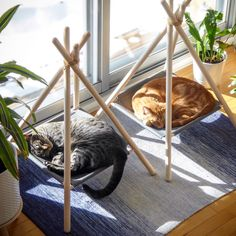 Adventure Tent for cats. Stylish cat bed for discerning home owners. Adventure Tent for cats. Stylish cat bed for discerning home owners. Pet Furniture, Furniture Design, Modern Furniture, Furniture Ideas, Diy Furniture Redo, Futuristic Furniture, Plywood Furniture, Cat Room, Diy Stuffed Animals