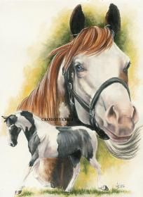 EMAILED~American Paint Horse Counted Cross Stitch Pattern