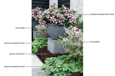 Garden & Landscape | & fitness